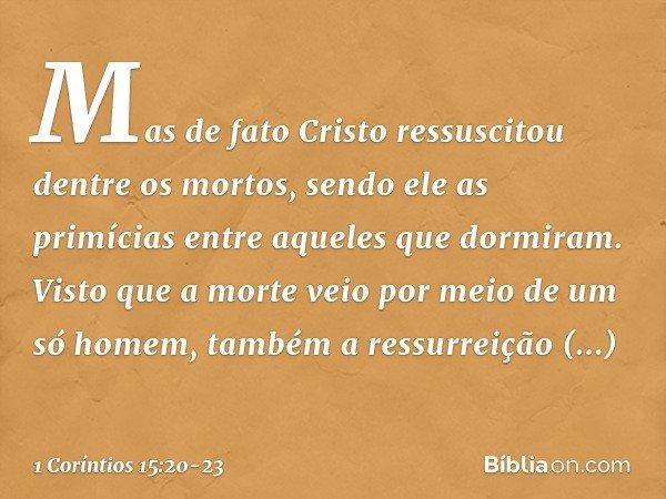 Mas de fato Cristo ressuscitou dentre os mortos, sendo ele as primícias entre aqueles que dormiram. Visto que a morte veio por meio de um só homem, também a res