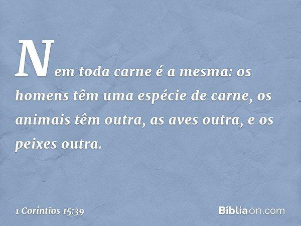 Nem toda carne é a mesma: os homens têm uma espécie de carne, os animais têm outra, as aves outra, e os peixes outra. -- 1 Coríntios 15:39