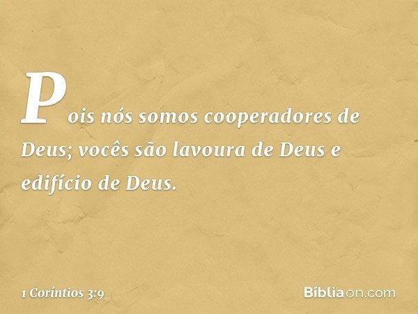 Pois nós somos cooperadores de Deus; vocês são lavoura de Deus e edifício de Deus. -- 1 Coríntios 3:9
