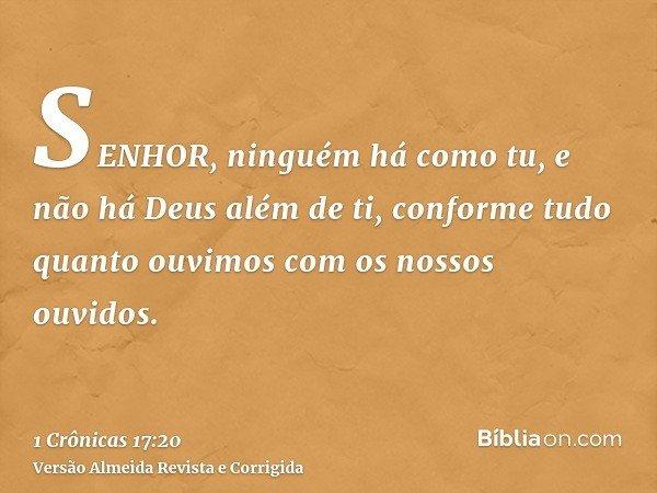 SENHOR, ninguém há como tu, e não há Deus além de ti, conforme tudo quanto ouvimos com os nossos ouvidos.