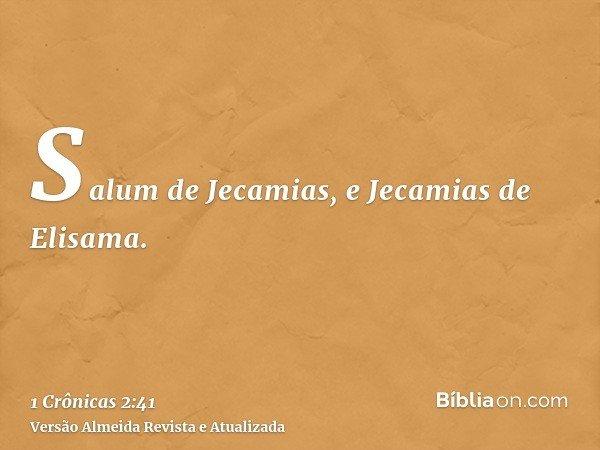 Salum de Jecamias, e Jecamias de Elisama.