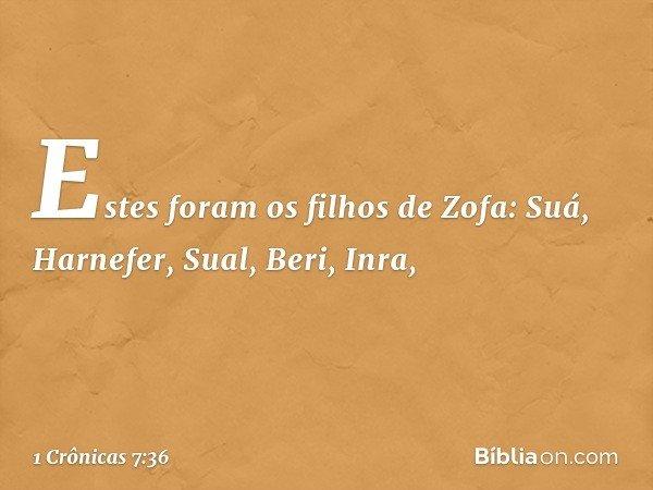 Estes foram os filhos de Zofa: Suá, Harnefer, Sual, Beri, Inra, -- 1 Crônicas 7:36