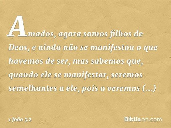 Amados, agora somos filhos de Deus, e ainda não se manifestou o que havemos de ser, mas sabemos que, quando ele se manifestar, seremos semelhantes a ele, pois o