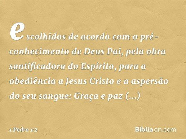 escolhidos de acordo com o pré-conhecimento de Deus Pai, pela obra santificadora do Espírito, para a obediência a Jesus Cristo e a aspersão do seu sangue: Graça