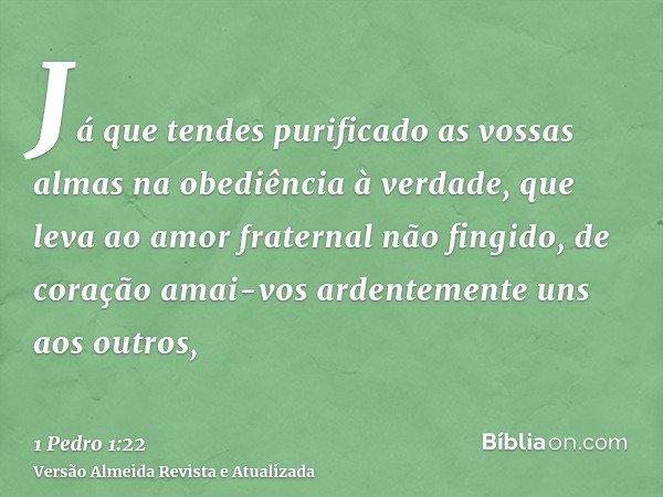 Já que tendes purificado as vossas almas na obediência à verdade, que leva ao amor fraternal não fingido, de coração amai-vos ardentemente uns aos outros,