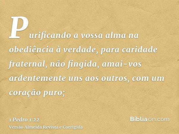 Purificando a vossa alma na obediência à verdade, para caridade fraternal, não fingida, amai-vos ardentemente uns aos outros, com um coração puro;