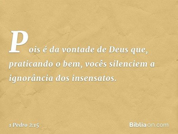 Pois é da vontade de Deus que, praticando o bem, vocês silenciem a ignorância dos insensatos. -- 1 Pedro 2:15