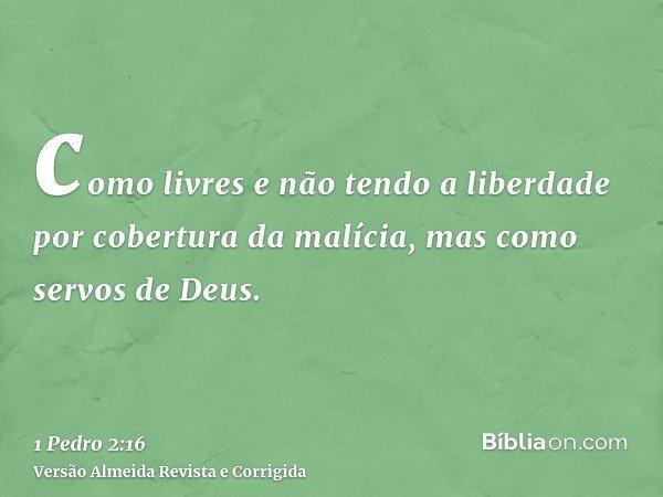 como livres e não tendo a liberdade por cobertura da malícia, mas como servos de Deus.