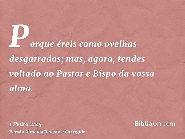 Porque éreis como ovelhas desgarradas; mas, agora, tendes voltado ao Pastor e Bispo da vossa alma.