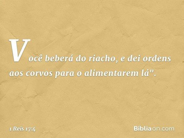 """Você beberá do riacho, e dei ordens aos corvos para o alimentarem lá"""". -- 1 Reis 17:4"""