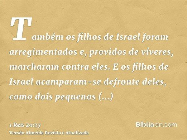 Também os filhos de Israel foram arregimentados e, providos de víveres, marcharam contra eles. E os filhos de Israel acamparam-se defronte deles, como dois pequ