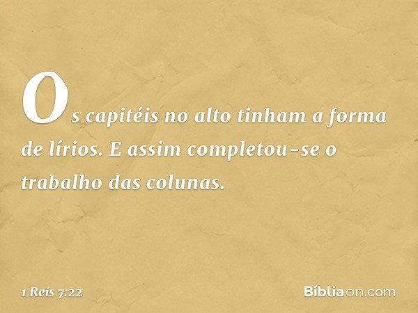 Os capitéis no alto tinham a forma de lírios. E assim completou-se o trabalho das colunas. -- 1 Reis 7:22