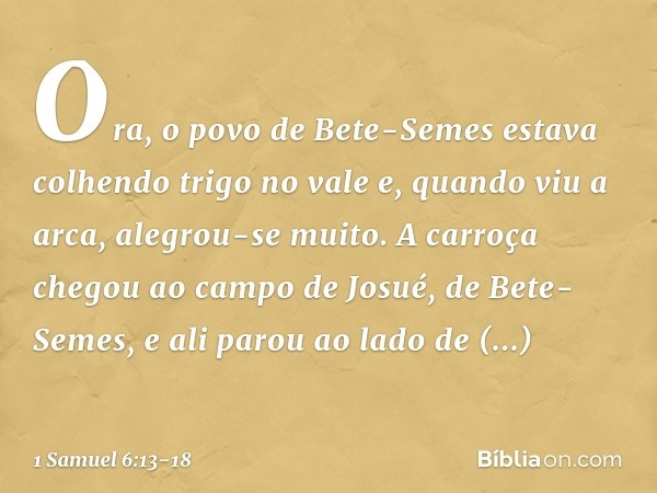 Ora, o povo de Bete-Semes estava colhendo trigo no vale e, quando viu a arca, alegrou-se muito. A carroça chegou ao campo de Josué, de Bete-Semes, e ali parou a