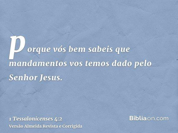 porque vós bem sabeis que mandamentos vos temos dado pelo Senhor Jesus.