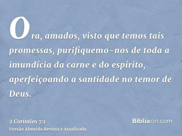 Ora, amados, visto que temos tais promessas, purifiquemo-nos de toda a imundícia da carne e do espírito, aperfeiçoando a santidade no temor de Deus.