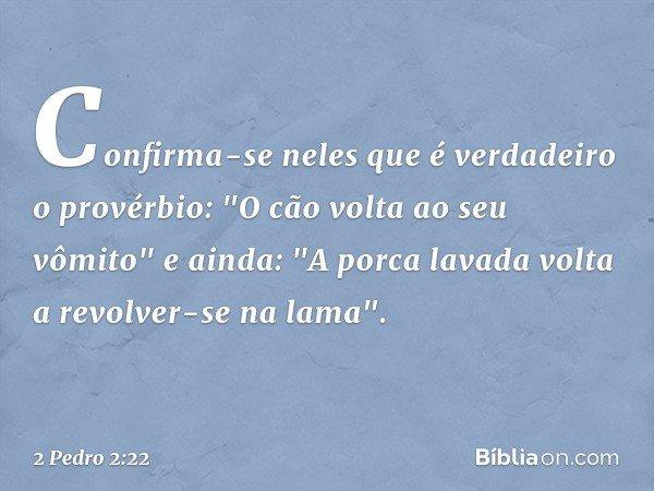 """Confirma-se neles que é verdadeiro o provérbio: """"O cão volta ao seu vômito"""" e ainda: """"A porca lavada volta a revolver-se na lama"""". -- 2 Pedro 2:22"""