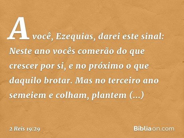 """"""" 'A você, Ezequias, darei este sinal: Neste ano vocês comerão do que crescer por si, e no próximo o que daquilo brotar. Mas no terceiro ano semeiem e colham, p"""
