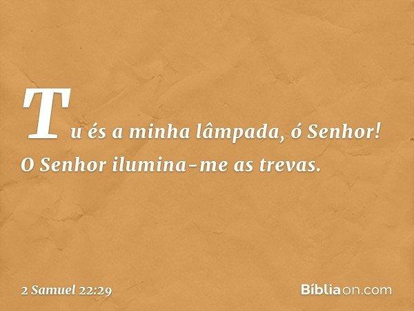 Tu és a minha lâmpada, ó Senhor! O Senhor ilumina-me as trevas. -- 2 Samuel 22:29