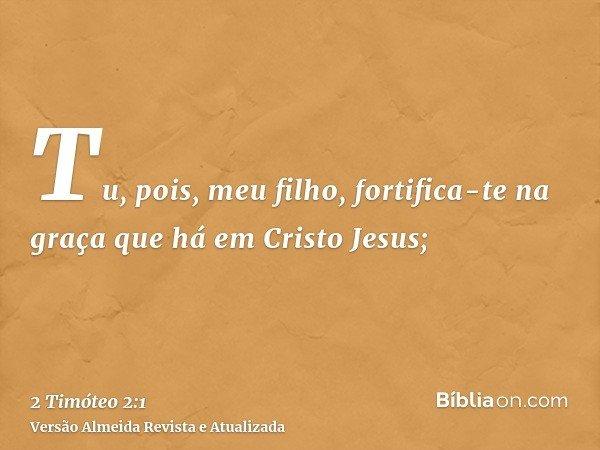 Tu, pois, meu filho, fortifica-te na graça que há em Cristo Jesus;