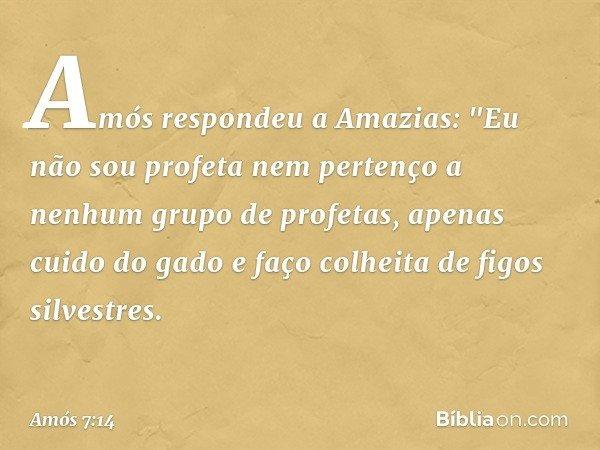 """Amós respondeu a Amazias: """"Eu não sou profeta nem pertenço a nenhum grupo de profetas, apenas cuido do gado e faço colheita de figos silvestres. -- Amós 7:14"""