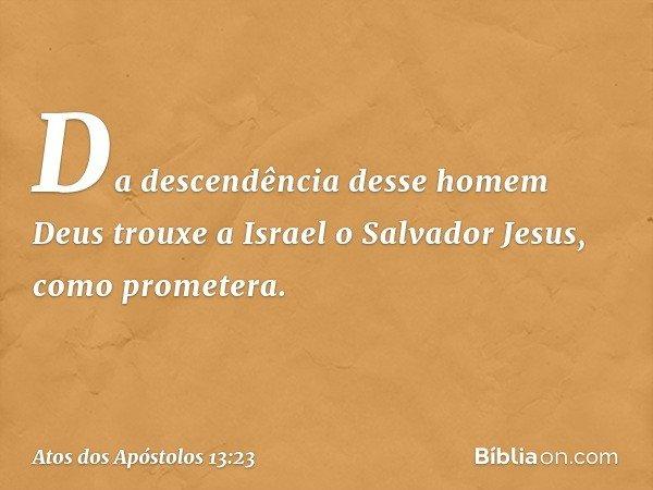 """""""Da descendência desse homem Deus trouxe a Israel o Salvador Jesus, como prometera. -- Atos dos Apóstolos 13:23"""