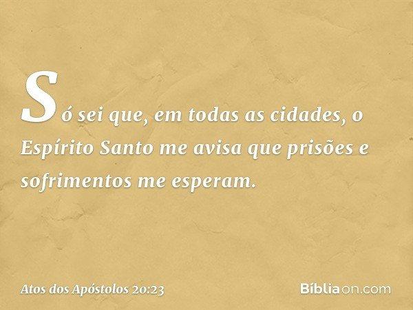 Só sei que, em todas as cidades, o Espírito Santo me avisa que prisões e sofrimentos me esperam. -- Atos dos Apóstolos 20:23