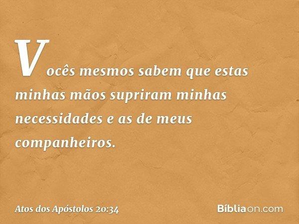 Vocês mesmos sabem que estas minhas mãos supriram minhas necessidades e as de meus companheiros. -- Atos dos Apóstolos 20:34