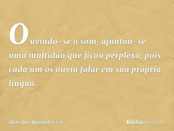 Ouvindo-se o som, ajuntou-se uma multidão que ficou perplexa, pois cada um os ouvia falar em sua própria língua. -- Atos dos Apóstolos 2:6