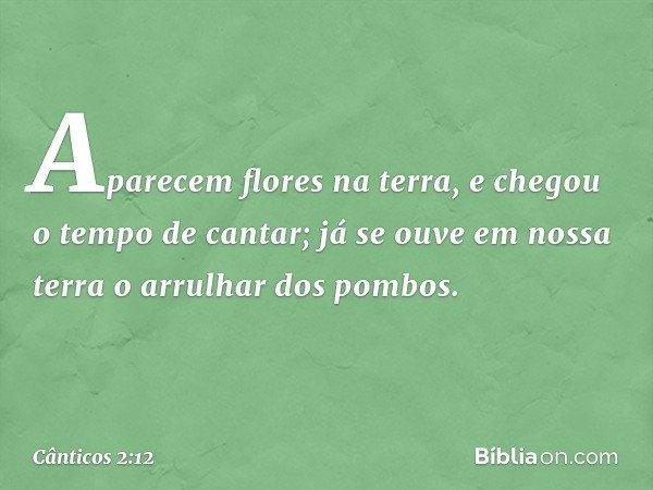 Aparecem flores na terra, e chegou o tempo de cantar; já se ouve em nossa terra o arrulhar dos pombos. -- Cânticos 2:12