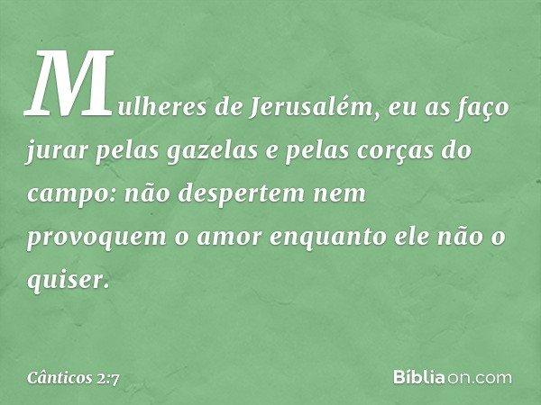Mulheres de Jerusalém, eu as faço jurar pelas gazelas e pelas corças do campo: não despertem nem provoquem o amor enquanto ele não o quiser. -- Cânticos 2:7