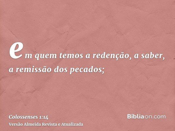 em quem temos a redenção, a saber, a remissão dos pecados;