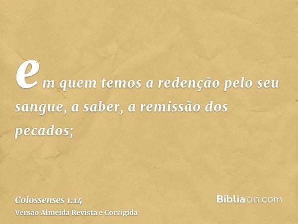 em quem temos a redenção pelo seu sangue, a saber, a remissão dos pecados;
