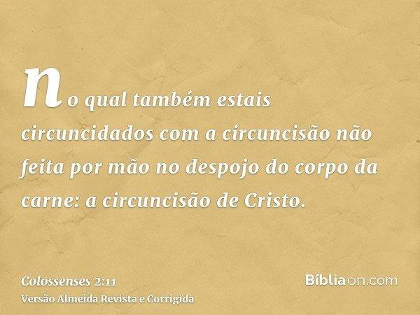 no qual também estais circuncidados com a circuncisão não feita por mão no despojo do corpo da carne: a circuncisão de Cristo.