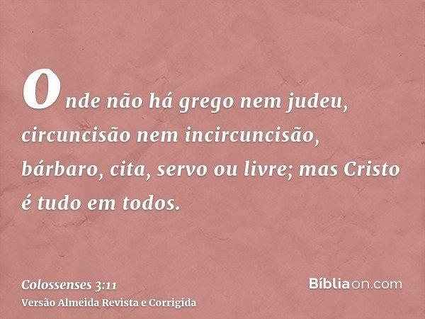 onde não há grego nem judeu, circuncisão nem incircuncisão, bárbaro, cita, servo ou livre; mas Cristo é tudo em todos.