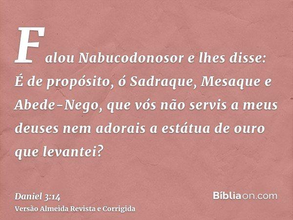 Falou Nabucodonosor e lhes disse: É de propósito, ó Sadraque, Mesaque e Abede-Nego, que vós não servis a meus deuses nem adorais a estátua de ouro que levantei?