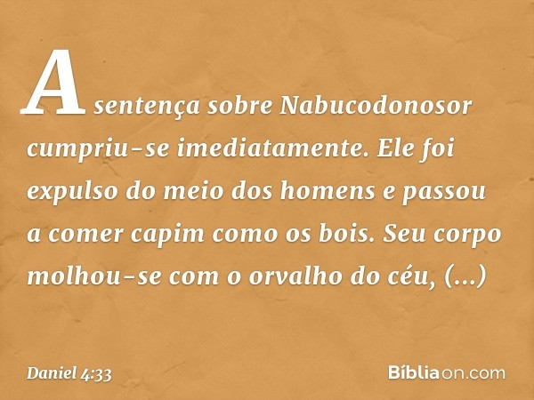A sentença sobre Nabucodonosor cumpriu-se imediatamente. Ele foi expulso do meio dos homens e passou a comer capim como os bois. Seu corpo molhou-se com o orval