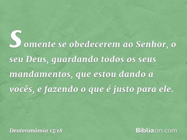 somente se obedecerem ao Senhor, o seu Deus, guardando todos os seus mandamentos, que estou dando a vocês, e fazendo o que é justo para ele. -- Deuteronômio 13: