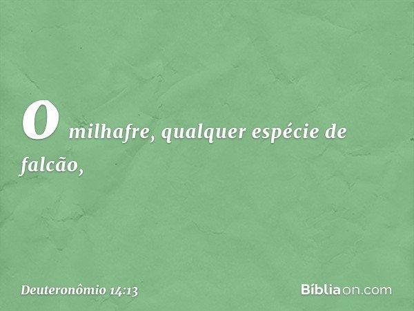 o milhafre, qualquer espécie de falcão, -- Deuteronômio 14:13