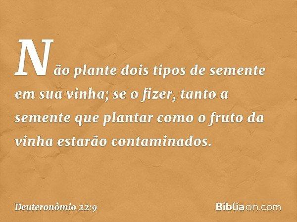 """""""Não plante dois tipos de semente em sua vinha; se o fizer, tanto a semente que plantar como o fruto da vinha estarão contaminados. -- Deuteronômio 22:9"""