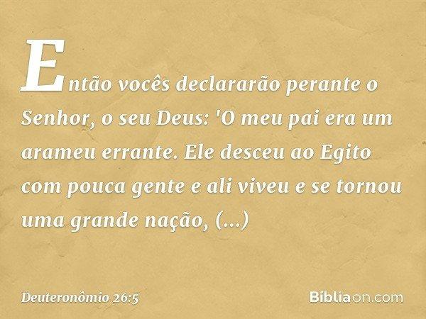 Então vocês declararão perante o Senhor, o seu Deus: 'O meu pai era um arameu errante. Ele desceu ao Egito com pouca gente e ali viveu e se tornou uma grande na