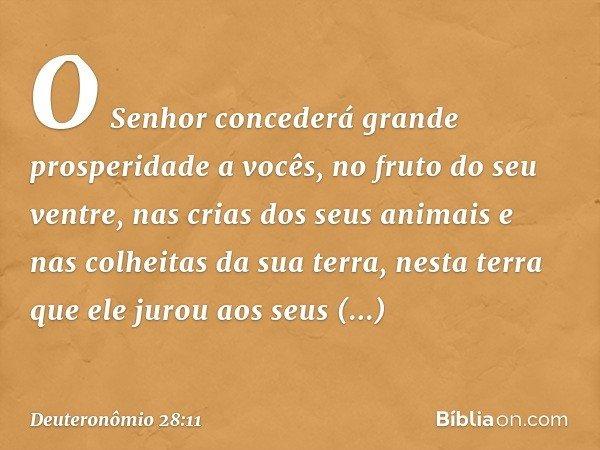 O Senhor concederá grande prosperidade a vocês, no fruto do seu ventre, nas crias dos seus animais e nas colheitas da sua terra, nesta terra que ele jurou aos s