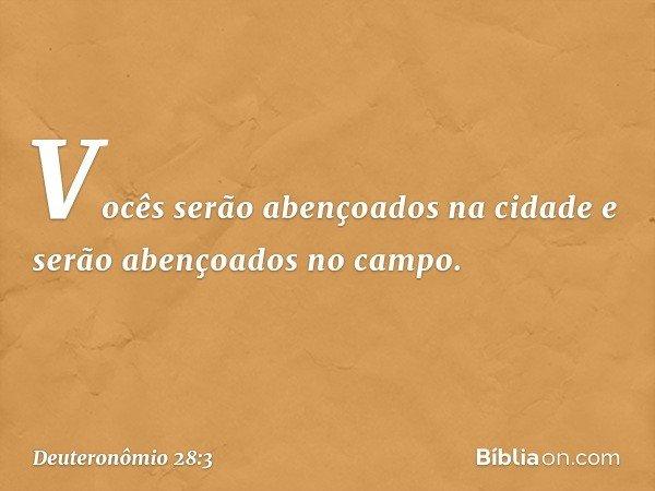 """""""Vocês serão abençoados na cidade e serão abençoados no campo. -- Deuteronômio 28:3"""