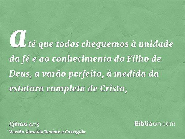 até que todos cheguemos à unidade da fé e ao conhecimento do Filho de Deus, a varão perfeito, à medida da estatura completa de Cristo,