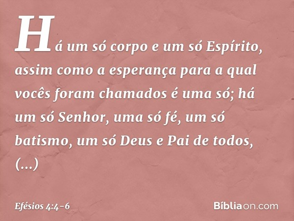 Há um só corpo e um só Espírito, assim como a esperança para a qual vocês foram chamados é uma só; há um só Senhor, uma só fé, um só batismo, um só Deus e Pai d
