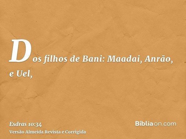 Dos filhos de Bani: Maadai, Anrão, e Uel,