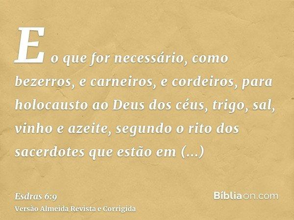 E o que for necessário, como bezerros, e carneiros, e cordeiros, para holocausto ao Deus dos céus, trigo, sal, vinho e azeite, segundo o rito dos sacerdotes que