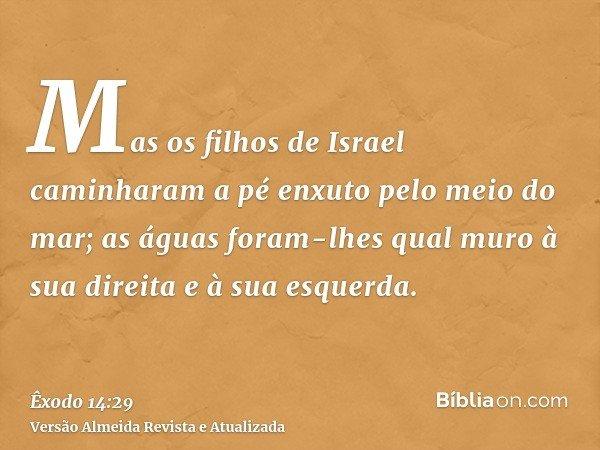 Mas os filhos de Israel caminharam a pé enxuto pelo meio do mar; as águas foram-lhes qual muro à sua direita e à sua esquerda.