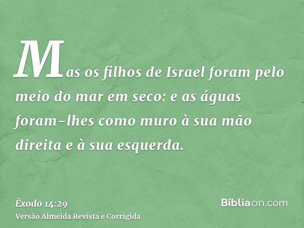 Mas os filhos de Israel foram pelo meio do mar em seco: e as águas foram-lhes como muro à sua mão direita e à sua esquerda.