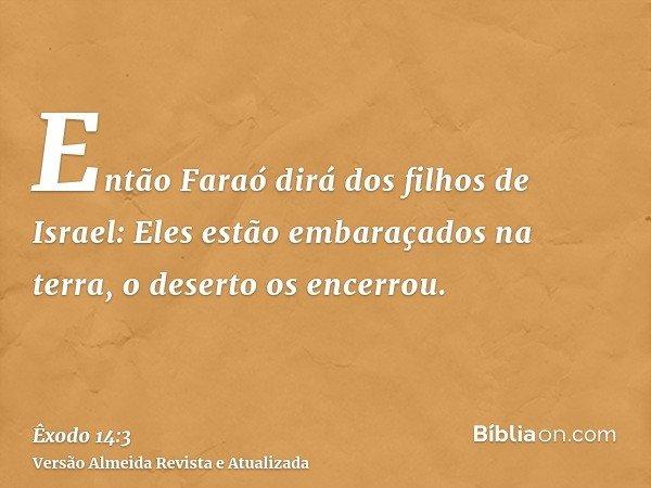 Então Faraó dirá dos filhos de Israel: Eles estão embaraçados na terra, o deserto os encerrou.