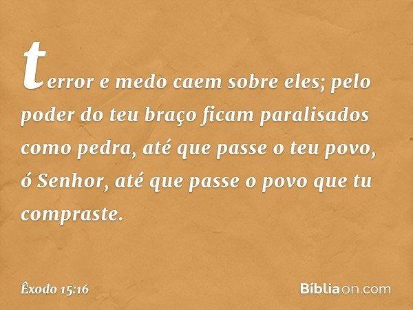 terror e medo caem sobre eles; pelo poder do teu braço ficam paralisados como pedra, até que passe o teu povo, ó Senhor, até que passe o povo que tu compraste.